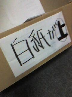 裏紙.jpg